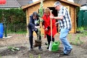 Garten10_und_pflanzen_wir_ein_Apfelbäumchen_Umweltministerin_Hendricks